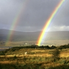 Donegal Rainbow Dunlewy