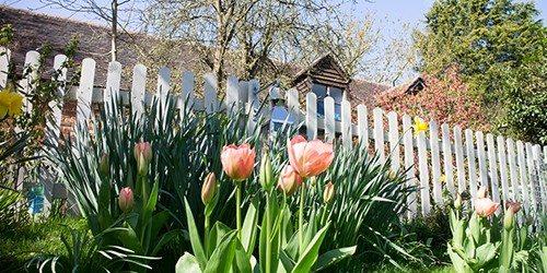 2- whispering-cottages-garden
