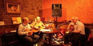 Live Traditional Irish Music at Castle Vault Restaurant in Castle Hotel in Dublin