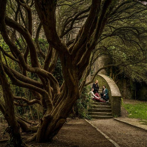The Five Ghosts of Malahide Castle
