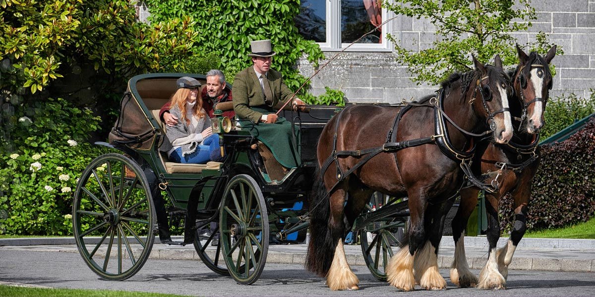 CARRIAGE RIDE, CASTLE HOTEL, IRELAND